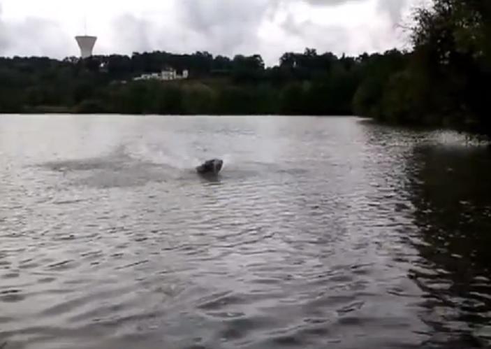 bateau amorceur le plus rapide