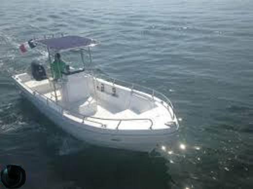 bateau peche 7 m