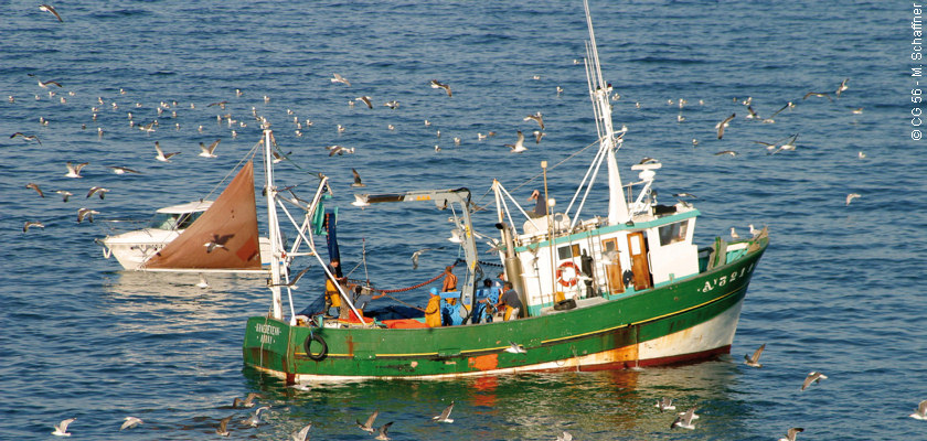 bateau peche breton