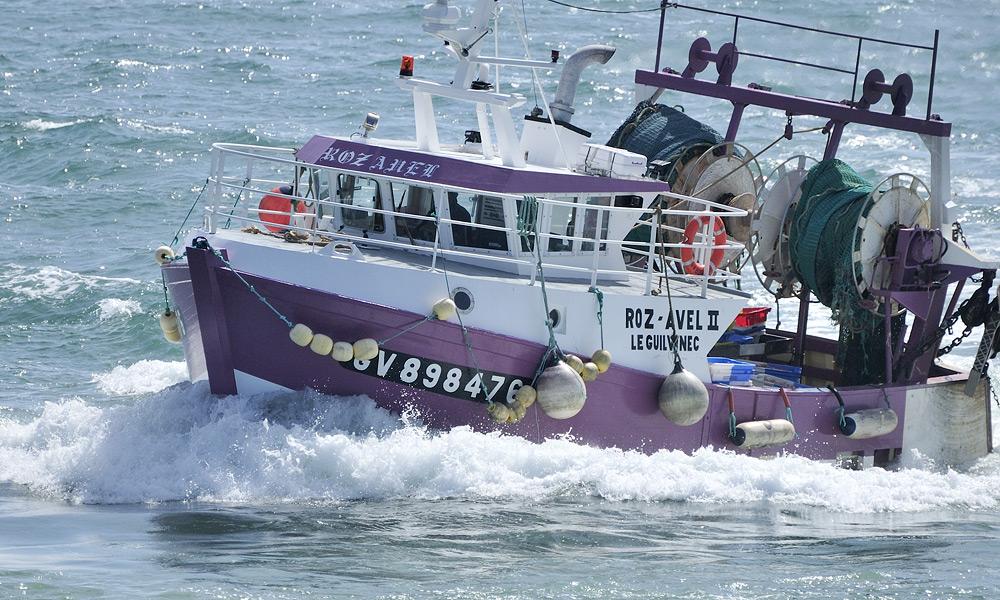 bateau peche guilvinec
