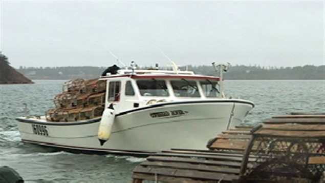 bateau peche homard