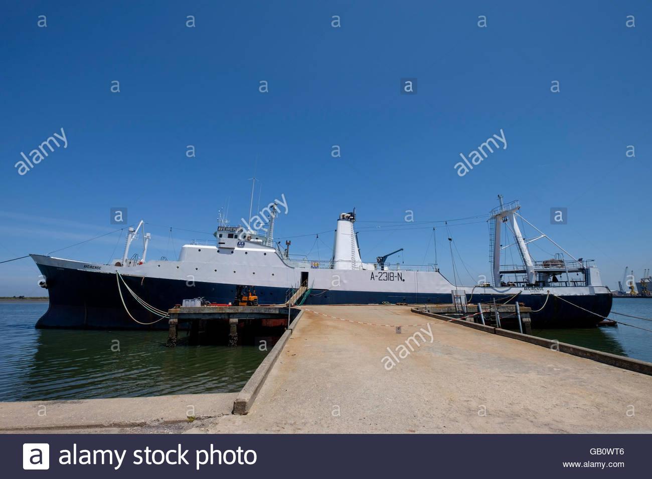 bateau peche morue