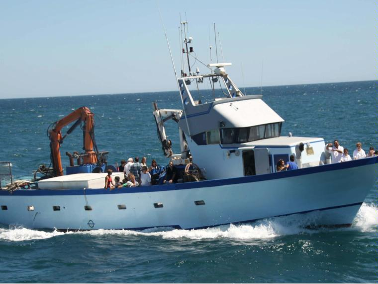 bateau peche occasion