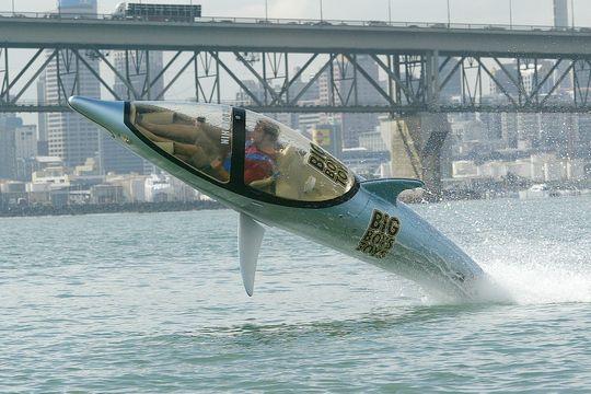 bateau peche requin