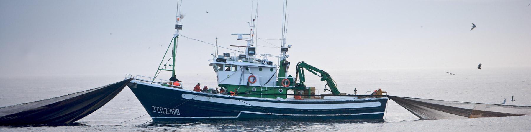 bateau peche sardine