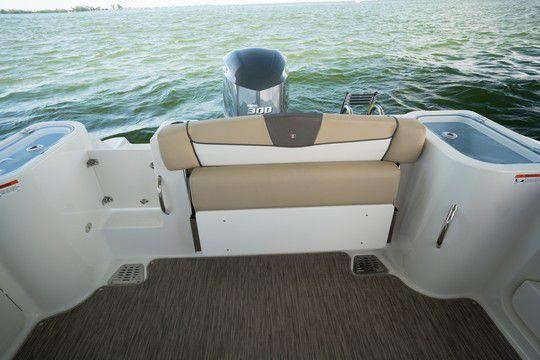 bateau peche wellcraft