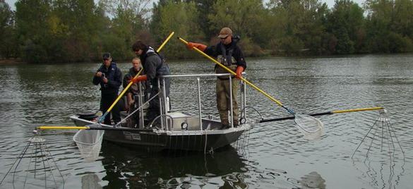 bateau peche electrique