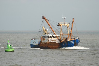 bateau peche nieuwpoort