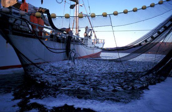 bateau peche norvege
